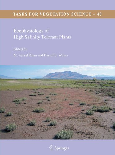 Ecophysiology of High Salinity Tolerant Plants (Tasks for Vegetation Science)